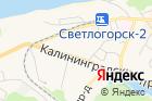 Федеральная служба государственной статистики поКалининградской области на карте