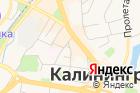 ГАНИКО, Государственный архив новейшей истории Калининградской области на карте