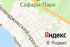 Кортеж на карте