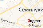 Семилукский государственный технико-экономический колледж на карте