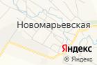 Новомарьевская сельская библиотека на карте