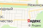 Галины Нучевой на карте