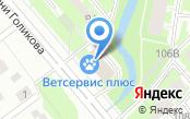 Терминал Нева