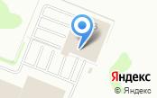 Kra_sotka_spb