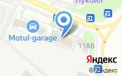 Примула-СПб