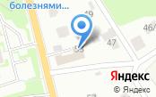 Магазин автозапчастей на Колтушском шоссе