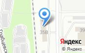 Shop.autoshina.com