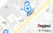 Дельта-Волгоград