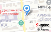 Волга-Электронные Системы