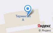 Здоровые Люди Санкт-Петербург