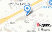 Шинтоп