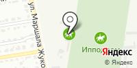 Доктор Vet на карте