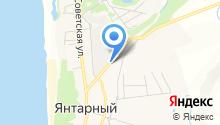 Областная станция по борьбе с болезнями животных Калининградской области на карте