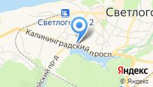 Пожарно-спасательная часть №17 Светлогорского городского округа на карте