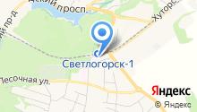 Межмуниципальный отдел МВД России Светлогорский на карте