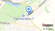Светлогорск-АВТО на карте