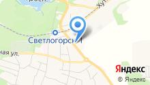 Центр поддержки малого предпринимательства Светлогорского городского округа на карте