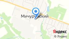 Администрация пос. Мичуринский на карте