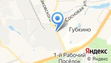 Внуковский завод огнеупорных изделий на карте