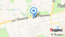 Всероссийское общество инвалидов г. Лобня на карте