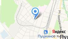 Пушкинский медицинский колледж на карте