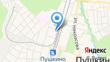 Мото-Пушкино на карте