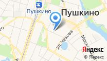 Пушкинская городская служба недвижимости на карте