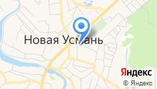 Новоусманская детская библиотека им. А.С. Пушкина на карте