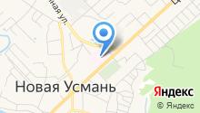 Новоусманская центральная районная больница на карте