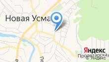 Отдел МВД России по Новоусманскому району на карте