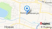 Всероссийский центр карантина растений на карте