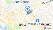 Борская поликлиника на карте
