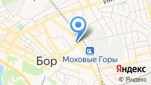 Отдел судебных приставов по Борскому району на карте