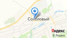 Средняя общеобразовательная школа р.п. Соколовый на карте