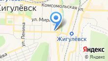 Жигулёвская станция по борьбе с болезнями животных на карте