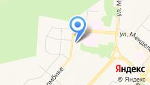 Золотая кружка на карте