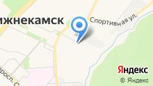 Государственное ветеринарное объединение г. Нижнекамска на карте