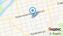 Алтайский кедр на карте