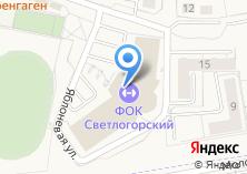 Компания «Светлогорский» на карте