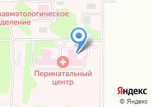 Компания «Видновский родильный дом» на карте