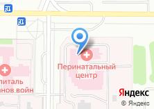 Компания «Дзержинский перинатальный центр» на карте