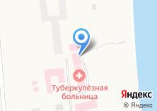Компания «Государственная областная Новосибирская клиническая туберкулезная больница» на карте