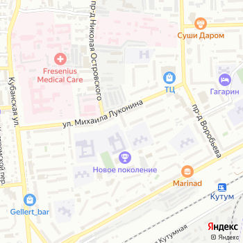 Дикая Орхидея на Яндекс.Картах