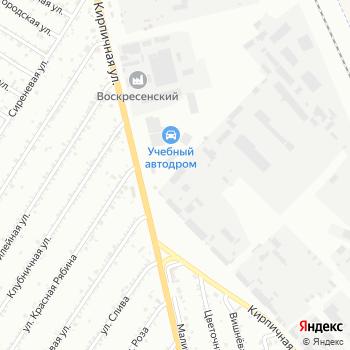 Сибирский лес на Яндекс.Картах
