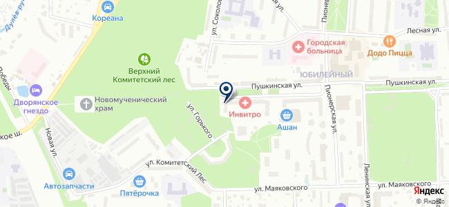 Магазин электротоваров на Пушкинской, 15 на карте
