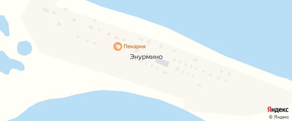 Южная улица на карте села Энурмино с номерами домов