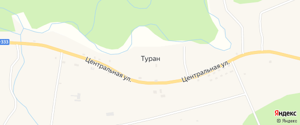 Лесная улица на карте села Турана с номерами домов