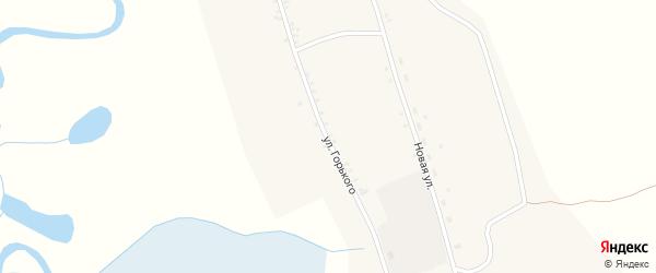 Улица Горького на карте села Тунки с номерами домов