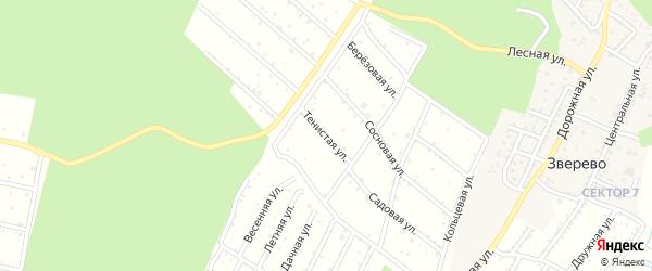 Тенистая улица на карте садового некоммерческого товарищества Восхода с номерами домов
