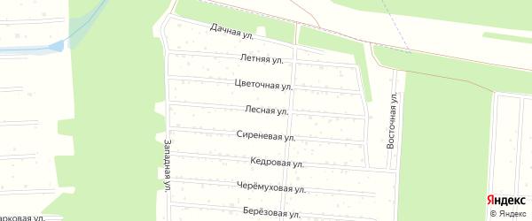 Лесная улица на карте садового некоммерческого товарищества Росинки с номерами домов